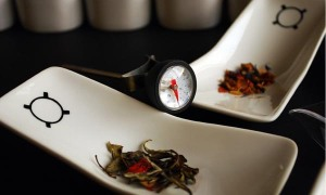Tea-Sommelier