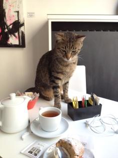 Al Neko Cafè qualcuno è interessato al mio muffin