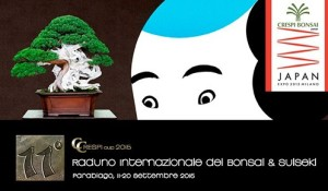 A Parabiago il Raduno del bonsai