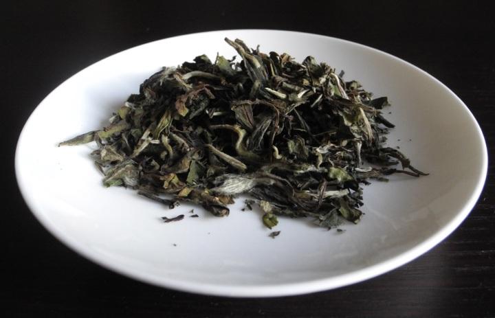 Tè bianco Bai Mudan: come si prepara e proprietà