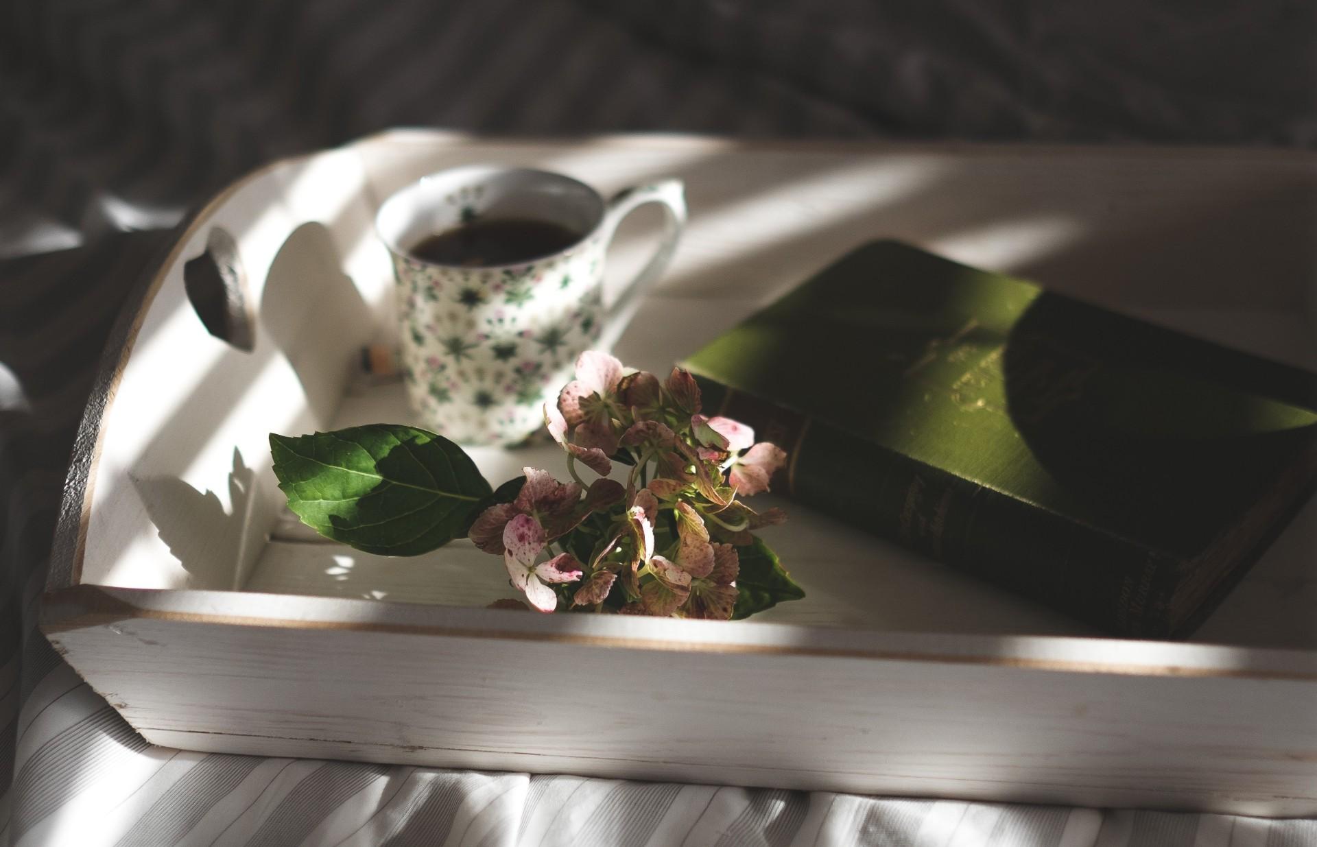 Gli eventi dedicati al mondo del tè tra corsi e degustazioni